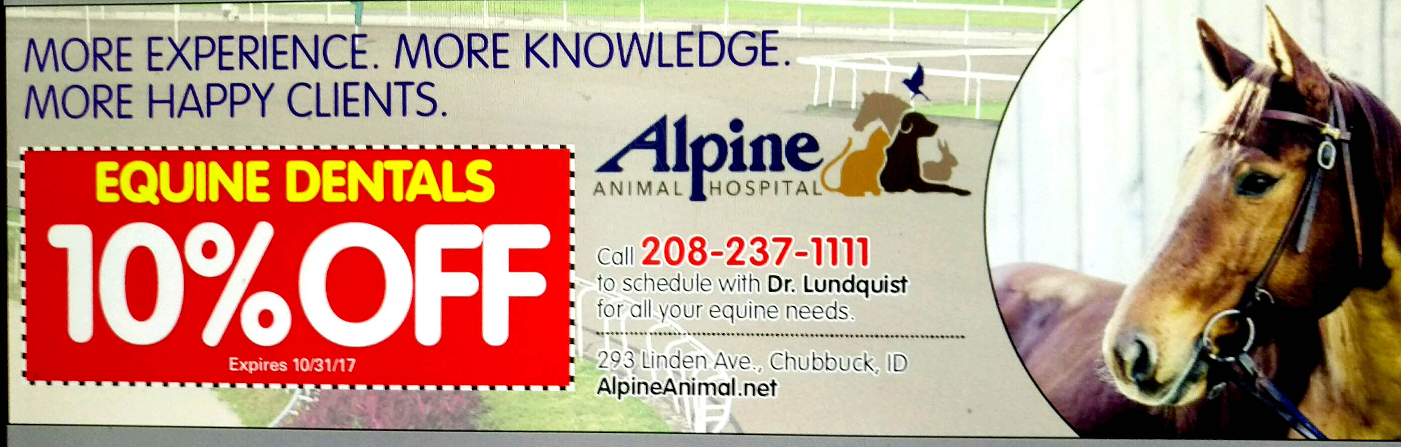 ad for equine dental discount
